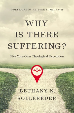 Why Is There Suffering? book image