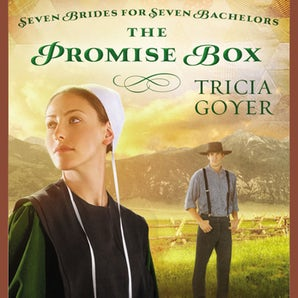 The Promise Box Downloadable audio file UBR by Tricia Goyer