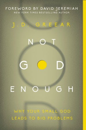Not God Enough book image
