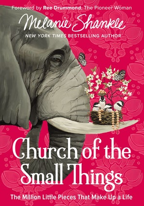 Church of the Small Things book image