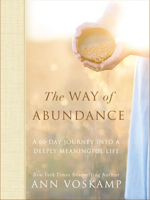 The Way of Abundance book image