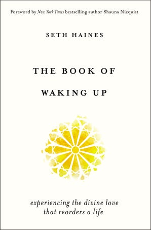 The Book of Waking Up book image