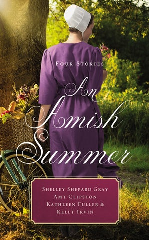 An Amish Summer book image