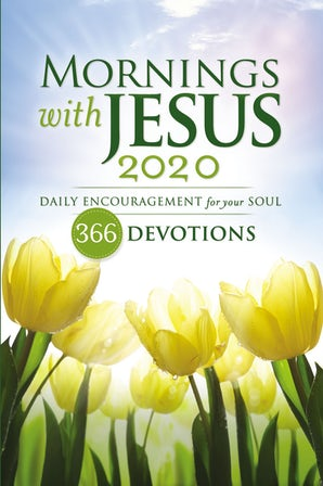 Mornings with Jesus 2020 book image