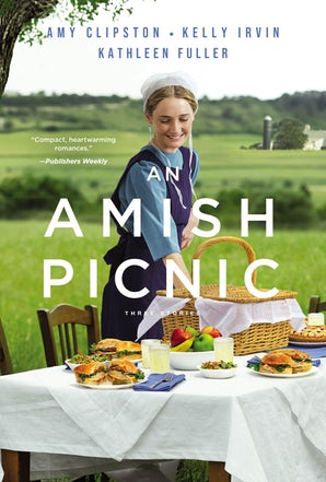 An Amish Picnic Paperback  by Amy Clipston