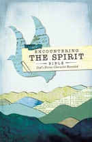 NIV, Encountering the Spirit Bible, Hardcover (Encounter Bible Series)