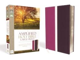 Amplified Holy Bible, Large Print, Leathersoft, Pink/Purple