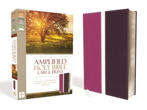 Amplified Holy Bible, Large Print, Leathersoft, Pink/Purple