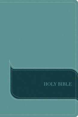 NIV, Understand the Faith Study Bible, Leathersoft, Teal, Indexed
