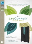 NIV, LifeConnect Study Bible, Leathersoft, Gray/Blue, Indexed, Red Letter Edition