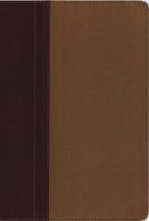 NIV, Quest Study Bible, Leathersoft, Burgundy/Tan, Indexed