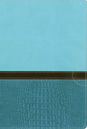 NIV, Quest Study Bible, Leathersoft, Teal, Indexed book image