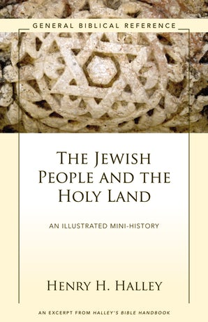 The Jewish People and the Holy Land book image