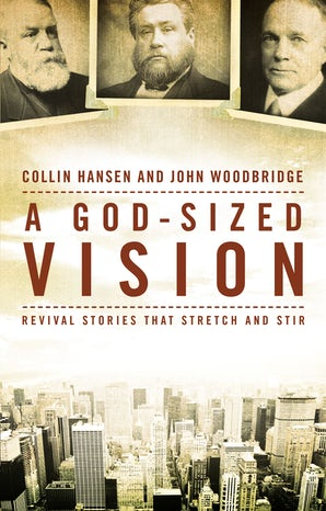 A God-Sized Vision book image
