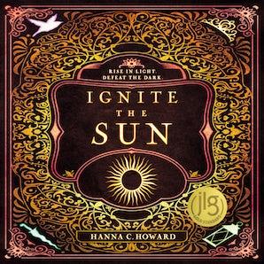 Ignite the Sun book image