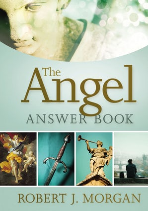 The Angel Answer Book book image