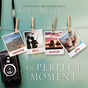 The Perfect Moment book image