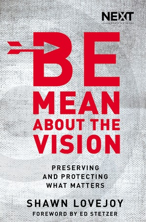 Be Mean About the Vision book image