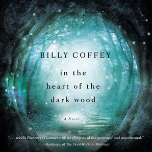 In the Heart of the Dark Wood Downloadable audio file UBR by Billy Coffey