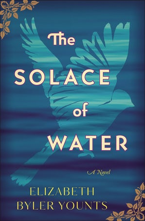 The Solace of Water Paperback  by Elizabeth Byler Younts