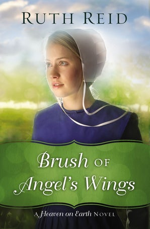 Brush of Angel's Wings Paperback  by Ruth Reid