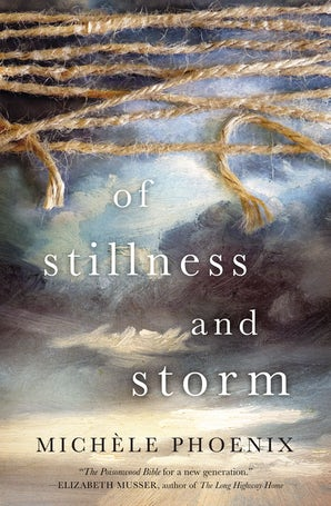 Of Stillness and Storm Paperback  by Michele Phoenix