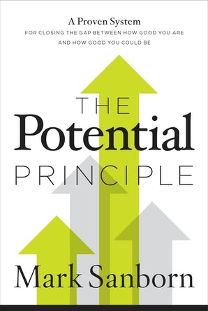 The Potential Principle book image
