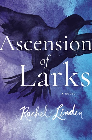 Ascension of Larks Paperback  by Rachel Linden