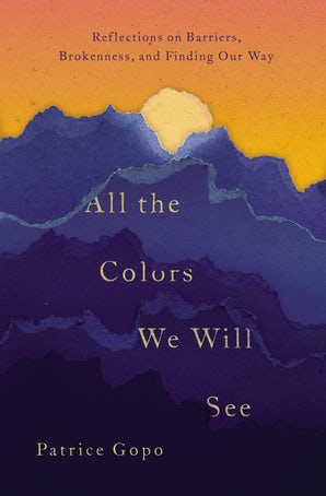 All the Colors We Will See book image