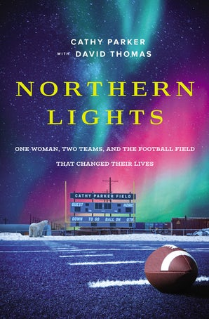 Northern Lights book image