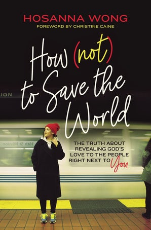 How (Not) to Save the World book image