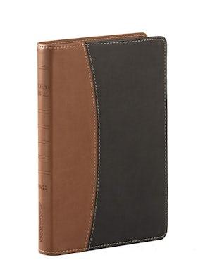 nvi-santa-biblia-ultrafina-compacta