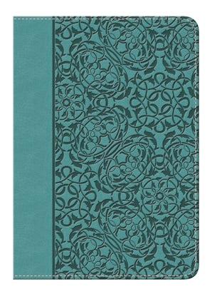 nvi-santa-biblia-edicion-regalo-turquesa