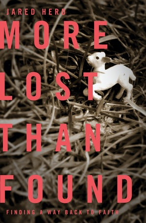 More Lost Than Found book image