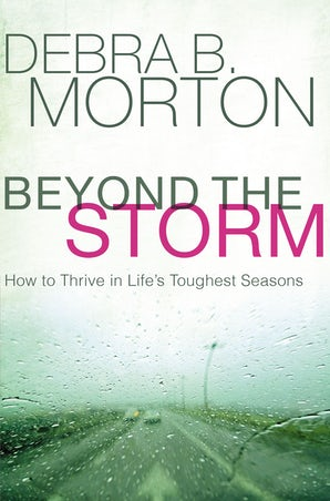 Beyond the Storm book image