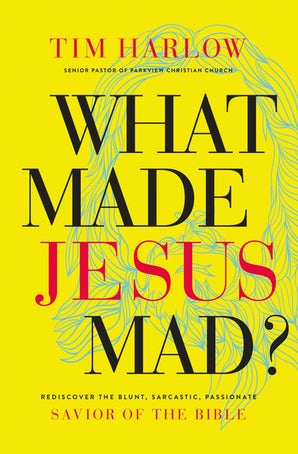 What Made Jesus Mad? book image