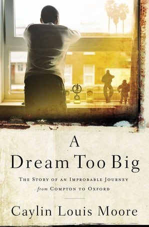 A Dream Too Big book image