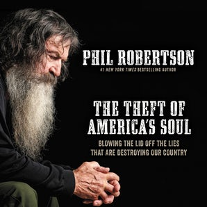 The Theft of America's Soul book image
