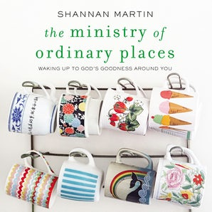 The Ministry of Ordinary Places book image