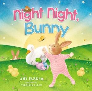 Night Night, Bunny book image