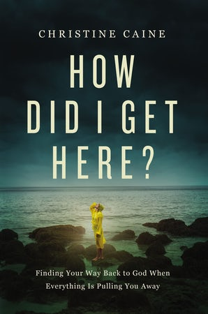 How Did I Get Here? book image