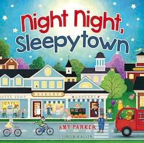 Night Night, Sleepytown book image