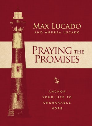 Praying the Promises book image