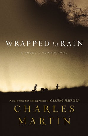 Wrapped in Rain Paperback  by Charles Martin