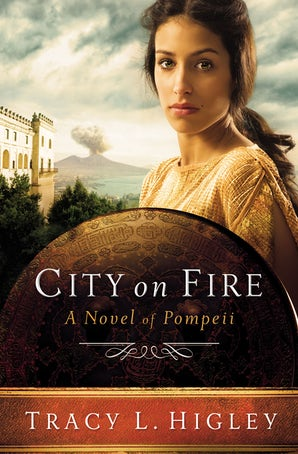 City on Fire Paperback  by Tracy Higley
