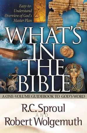 What's in the Bible book image