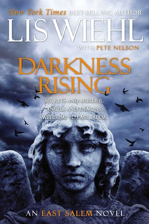 Darkness Rising book image