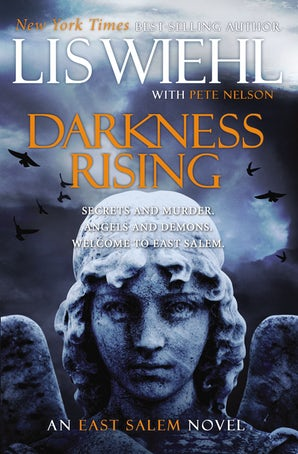 Darkness Rising Paperback  by Lis Wiehl