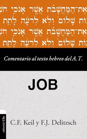 comentario-al-texto-hebreo-del-antiguo-testamento-job