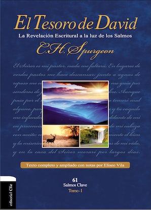 El Tesoro de David I book image